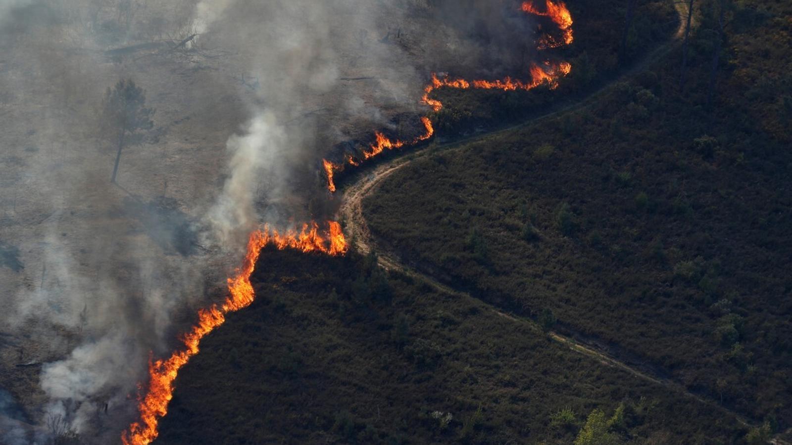 Calor, sequedat i vent: les tres claus que han ajudat a propagar les flames a Portugal
