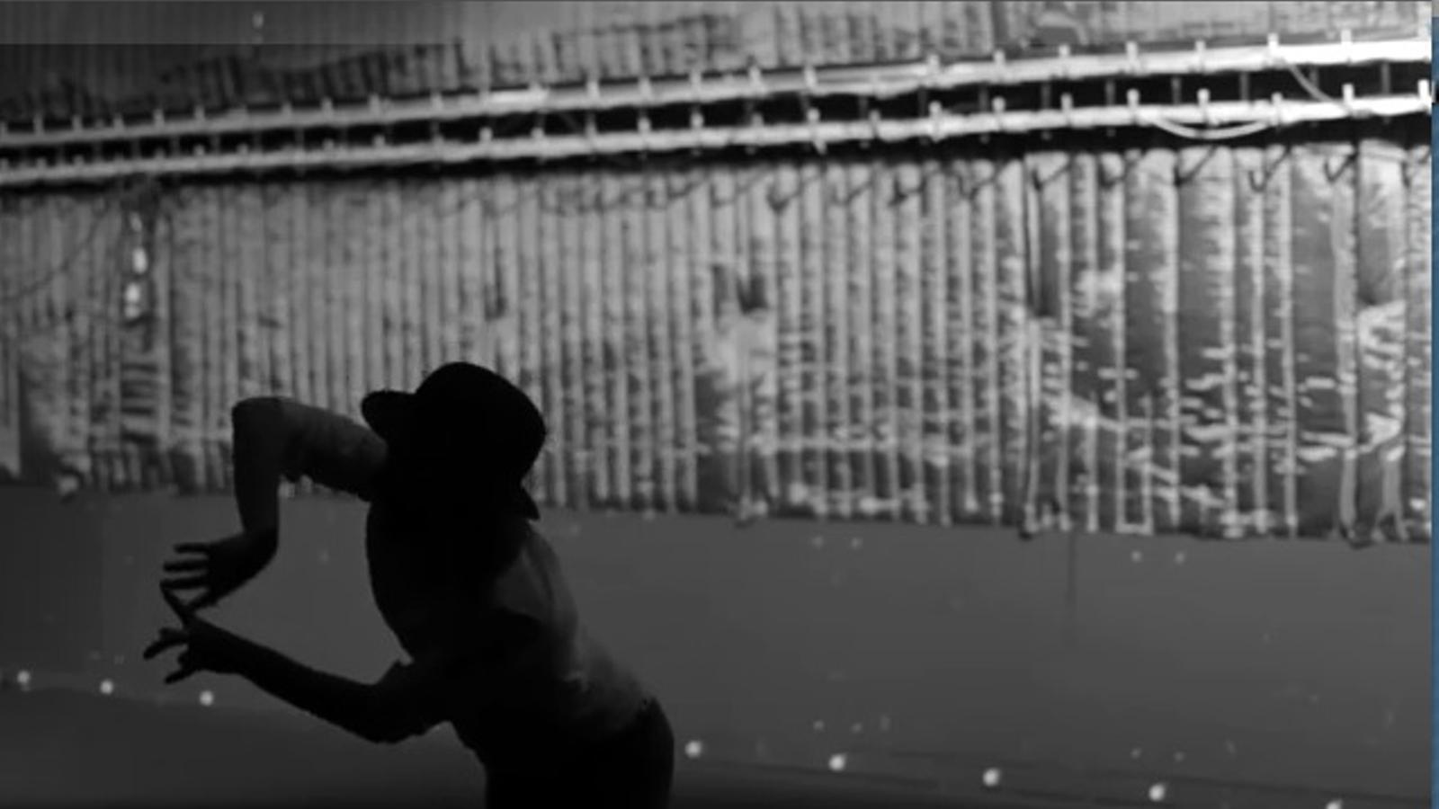 Lotus flower, el nou videoclip de Radiohead