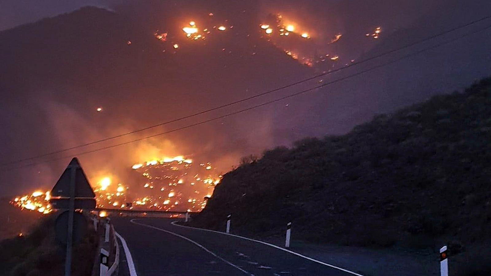 Diversos incendis han obligat a evacuar més de 1.000 persones a l'illa Tenerife