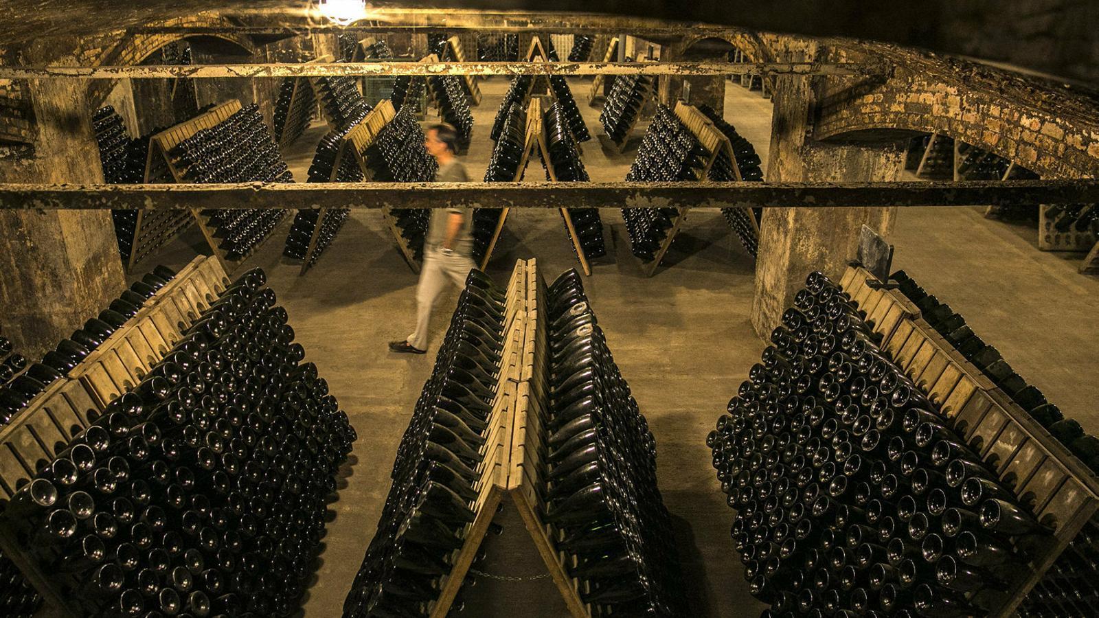 Juvé & Camps es desmarca dels grans cellers en el preu del raïm