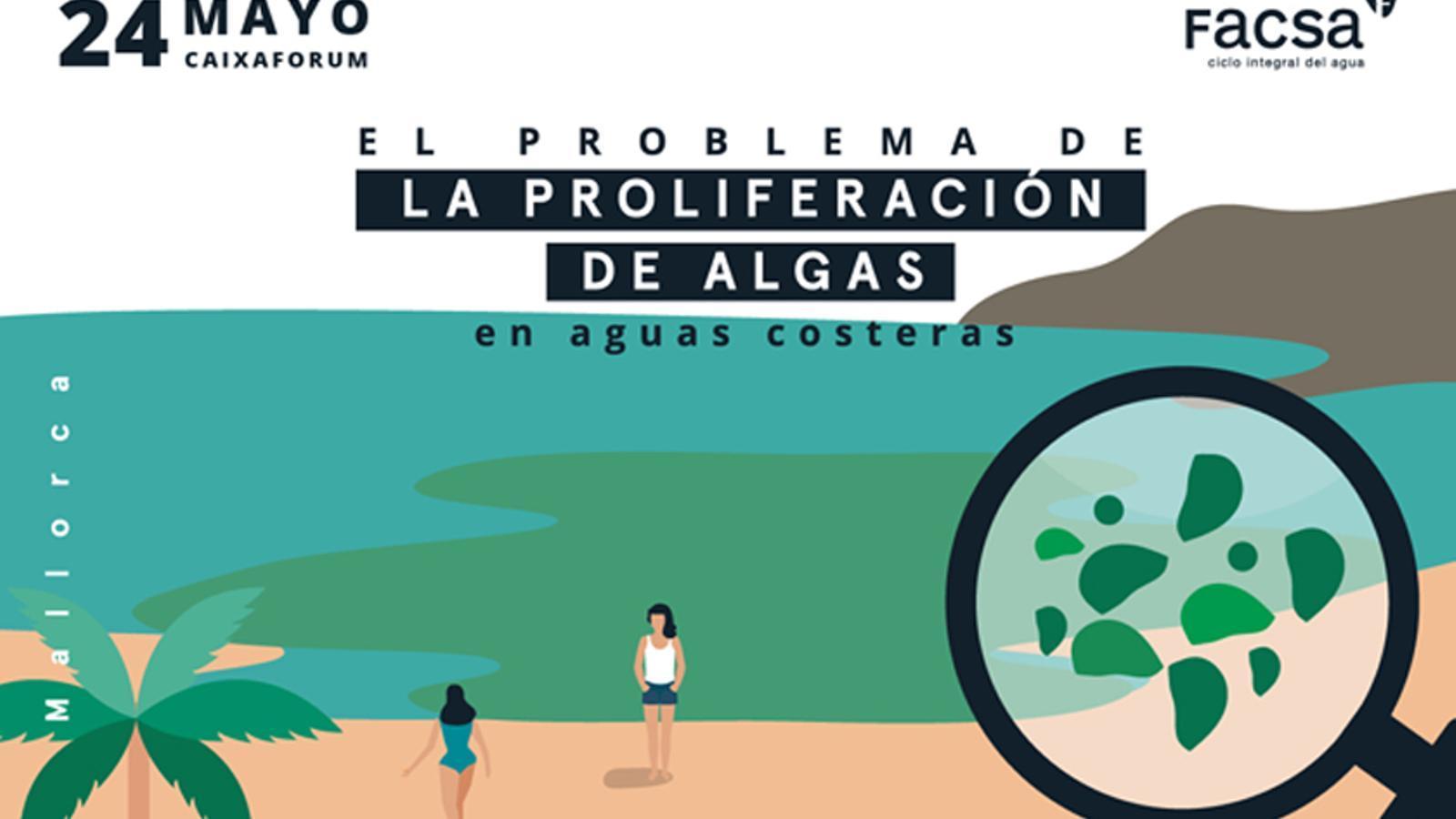 El problema de la proliferació d'algues en aigües costaneres