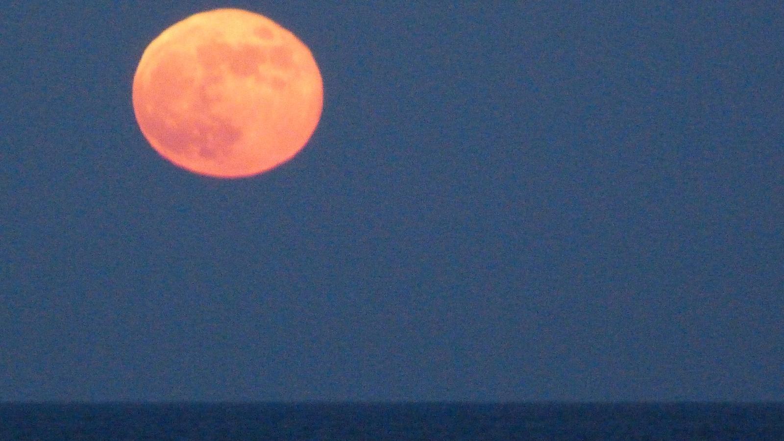 Lluna de sang de l'any passat, vista des de Gavà / XAVI CABO