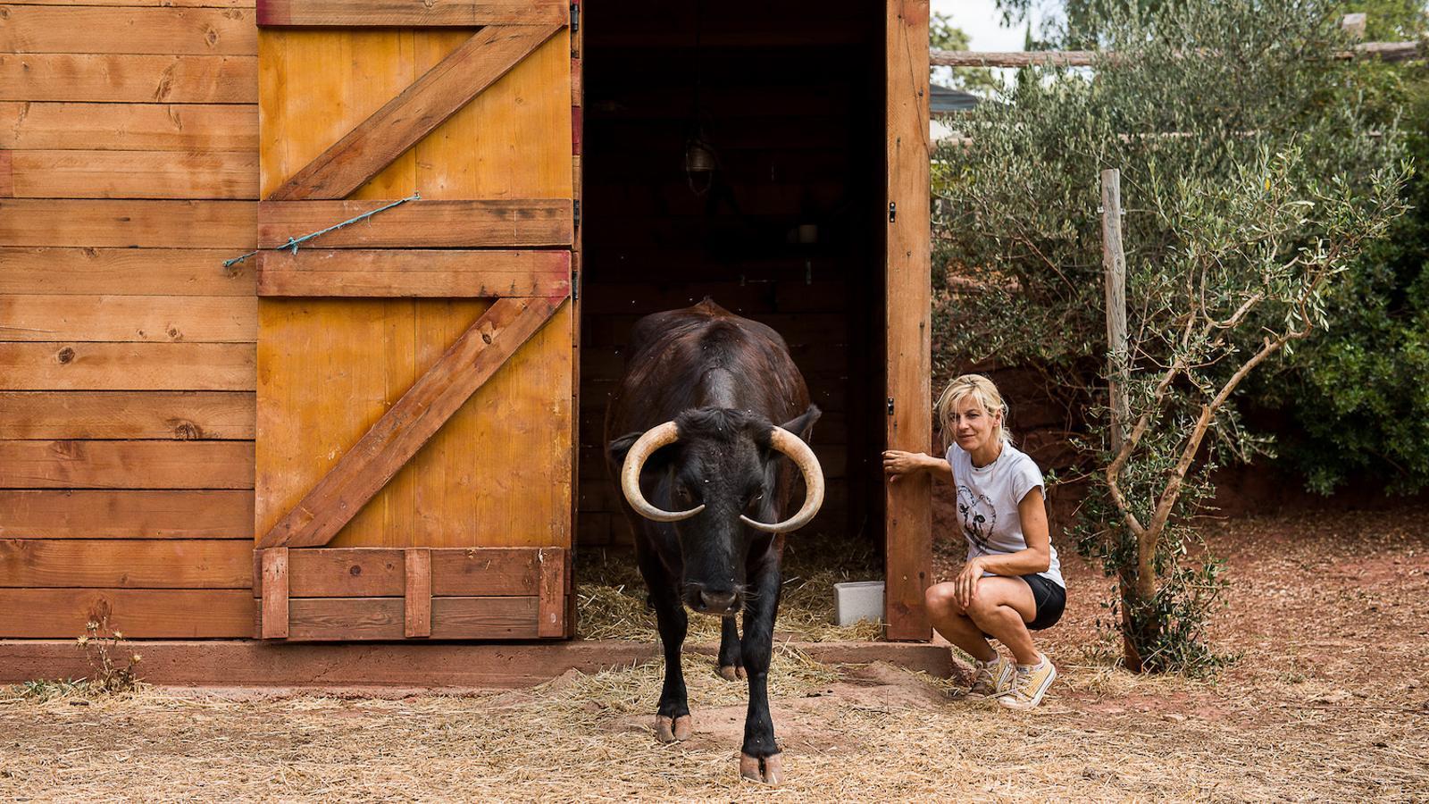 L'Elena i la Maragarita. La Margarita es va fer famosa fa uns mesos gracies al moviment d'uns activistes que s'oposaven al sacrifici de l'animal. De  moment han aconseguit parar-ho, però encara estan pendents de més anàlisis