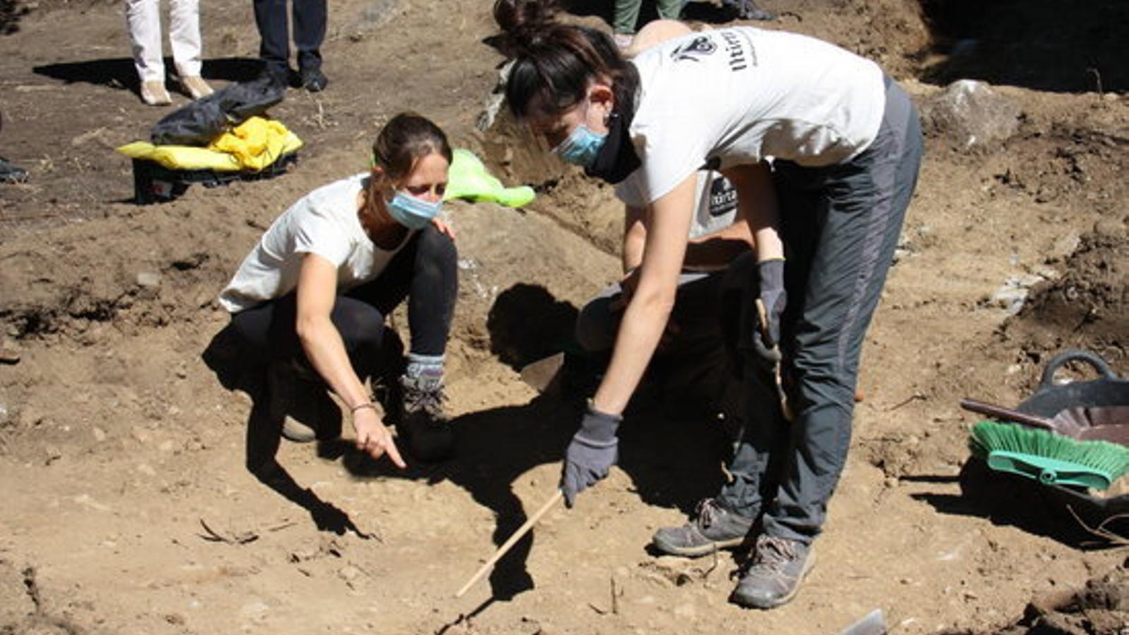 Un grup d'arqueòlogues treballant a la fossa
