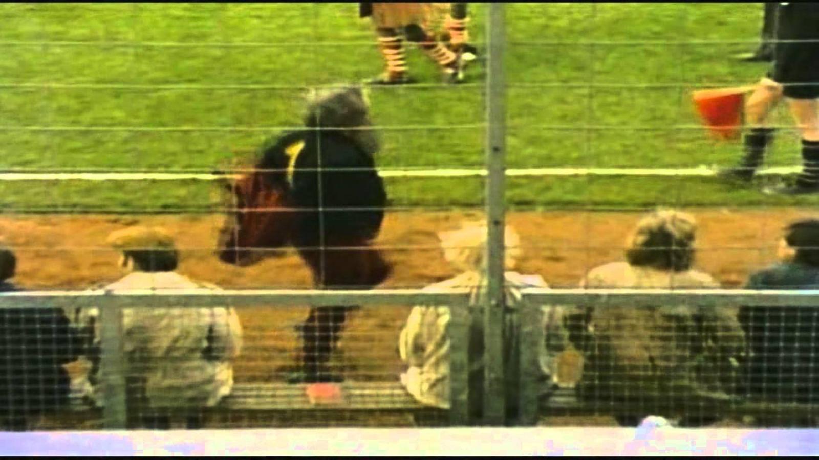 Partit de futbol entre filòsofs dels Monty Python