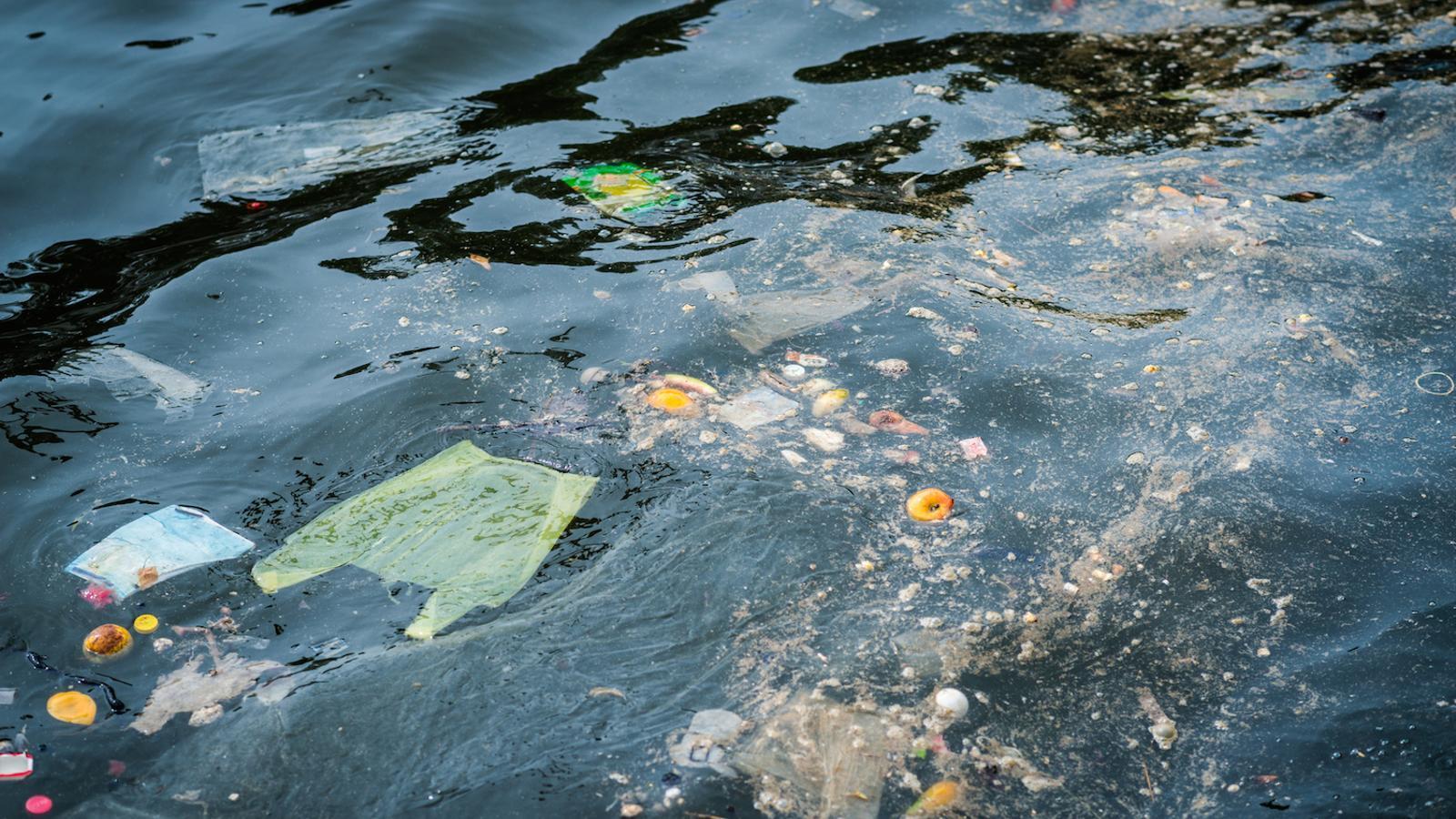 Es calcula que l'any 2050 al mar hi haurà més plàstics que peixos
