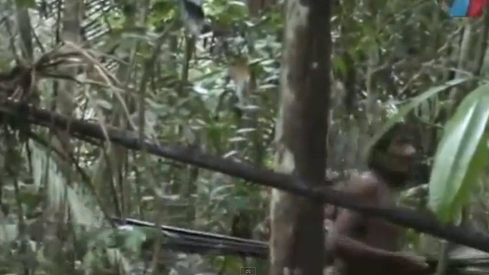El Brasil difon un vídeo dels seus indis més aïllats per demostrar que existeixen