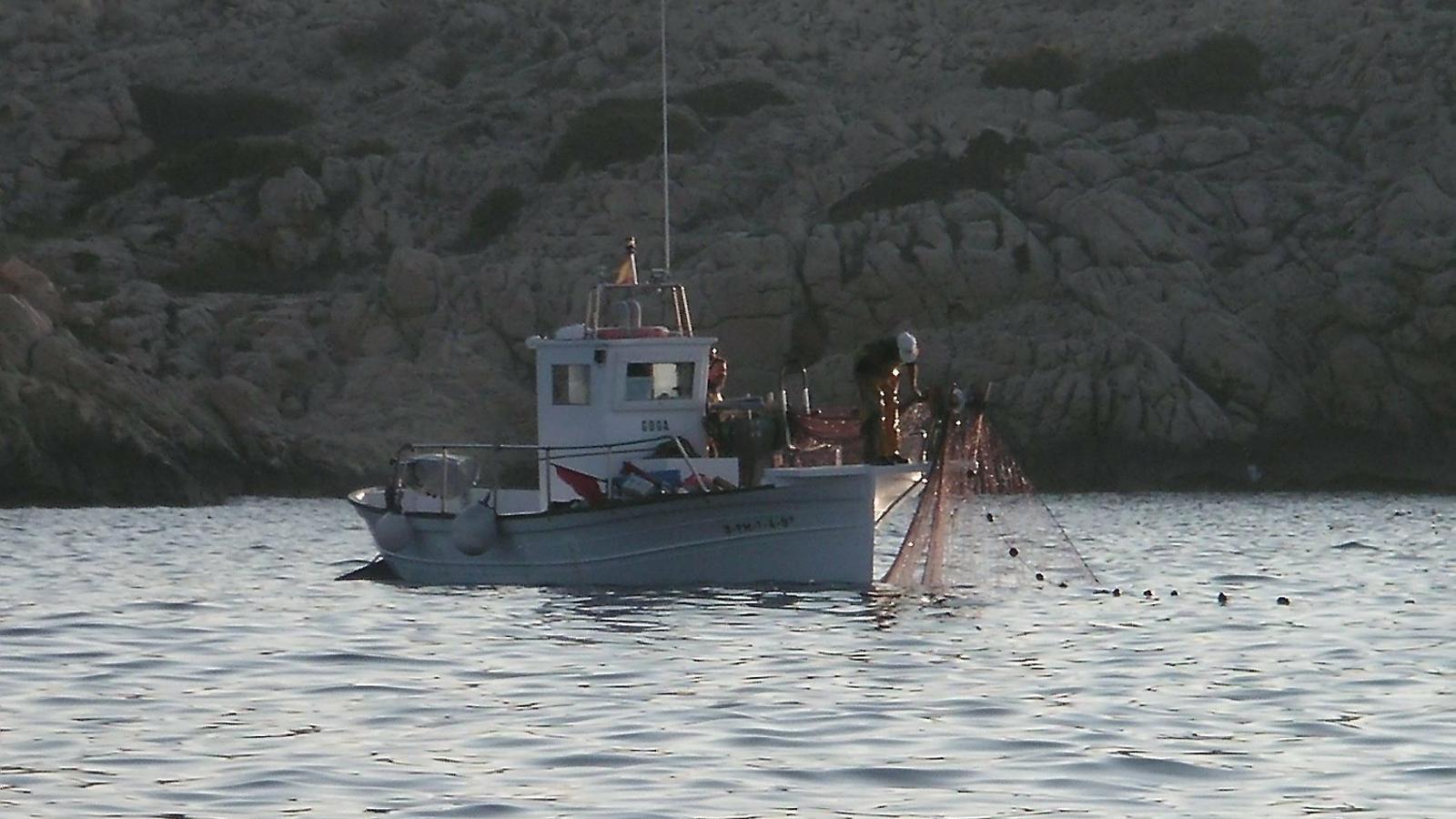 El treball dels inspectors pesquers a Menorca ha estat intens en un dels àmbits més rellevants per a la preservació del territori.