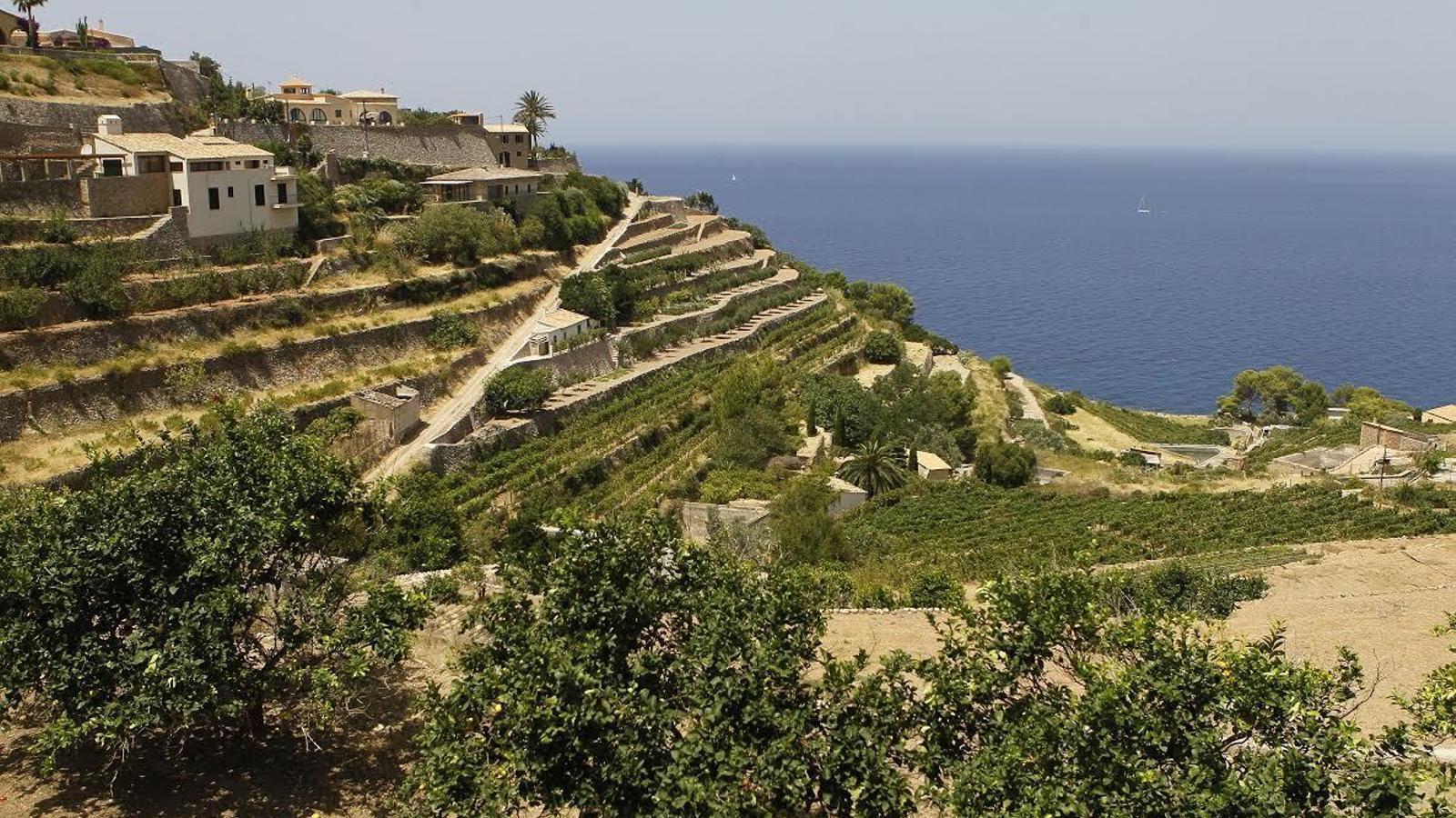 El poble de Banyalbufar, un dels més afectats per la sequera a Balears.