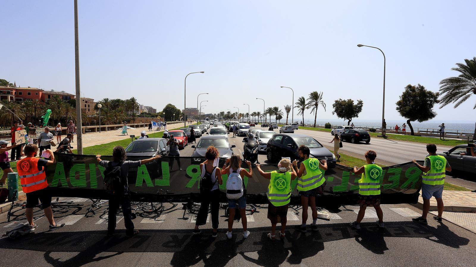 Activistes contra el canvi climàtic a Palma