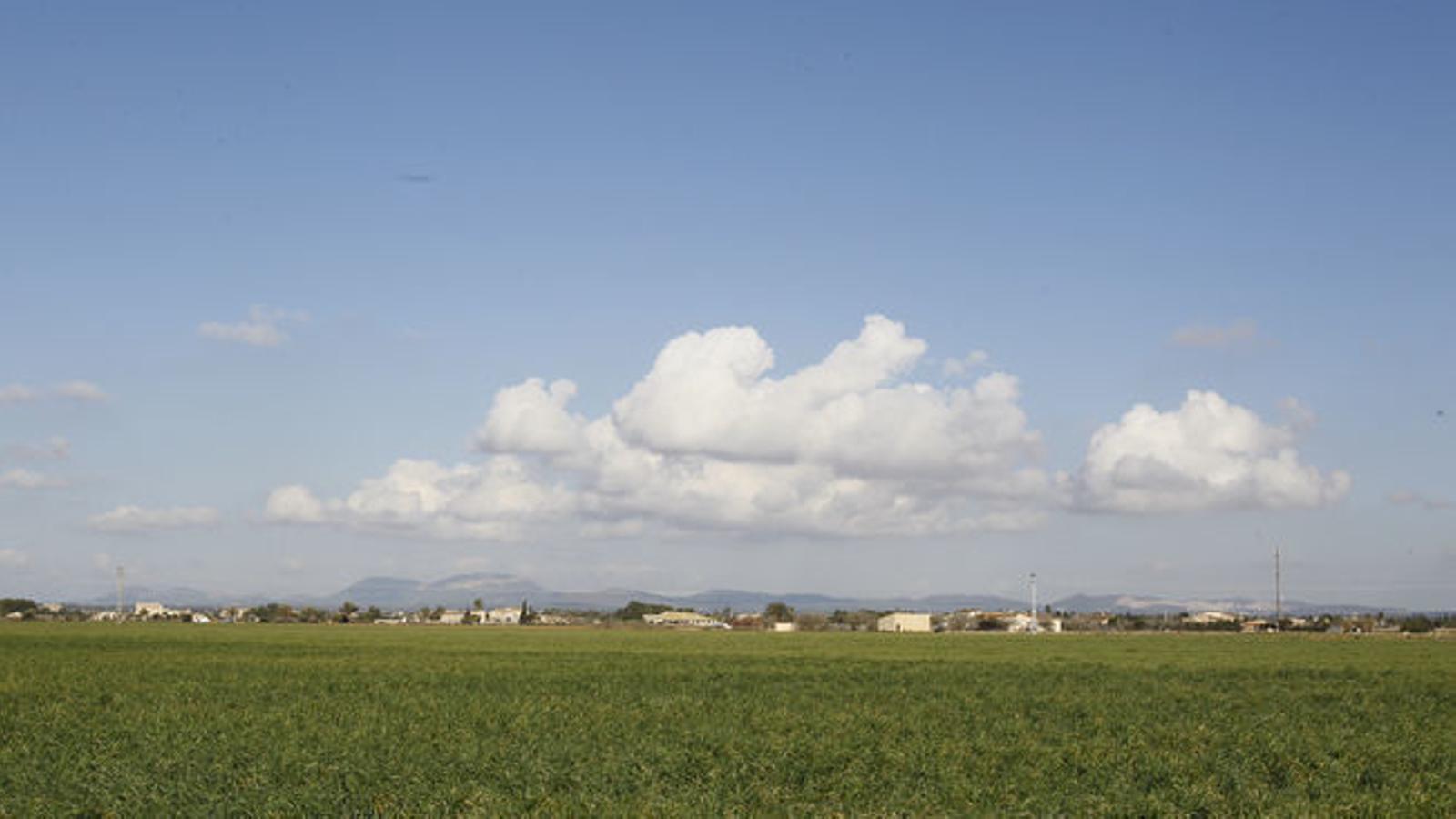 Cel clar amb niguls alts a les Illes Balears