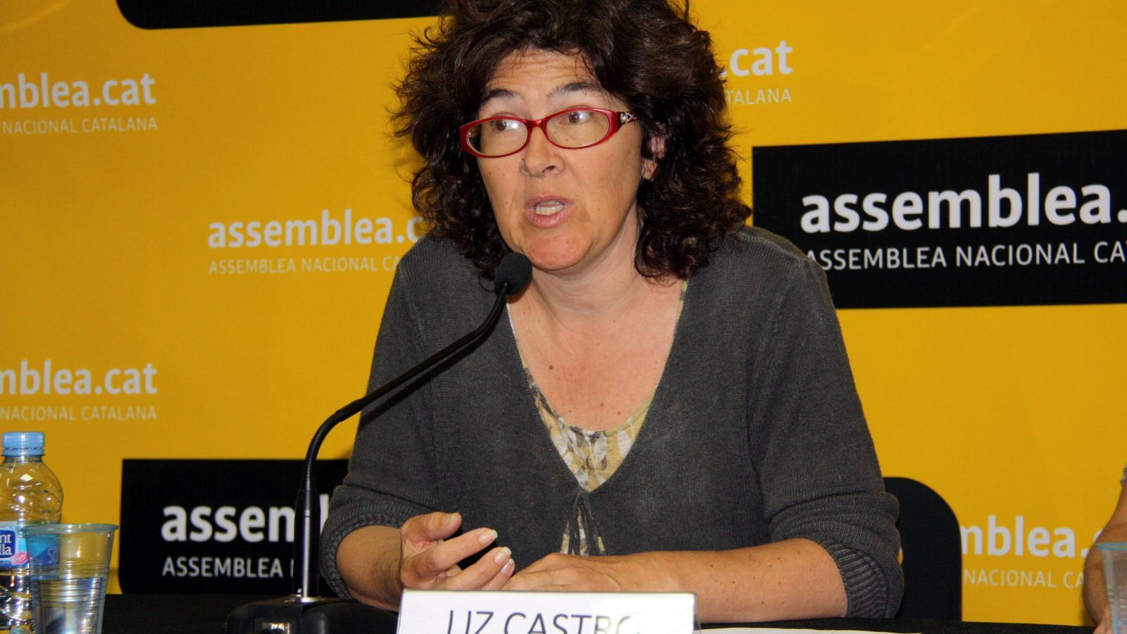 L'excandidata a presidir l'ANC Liz Castro, en una imatge d'arxiu