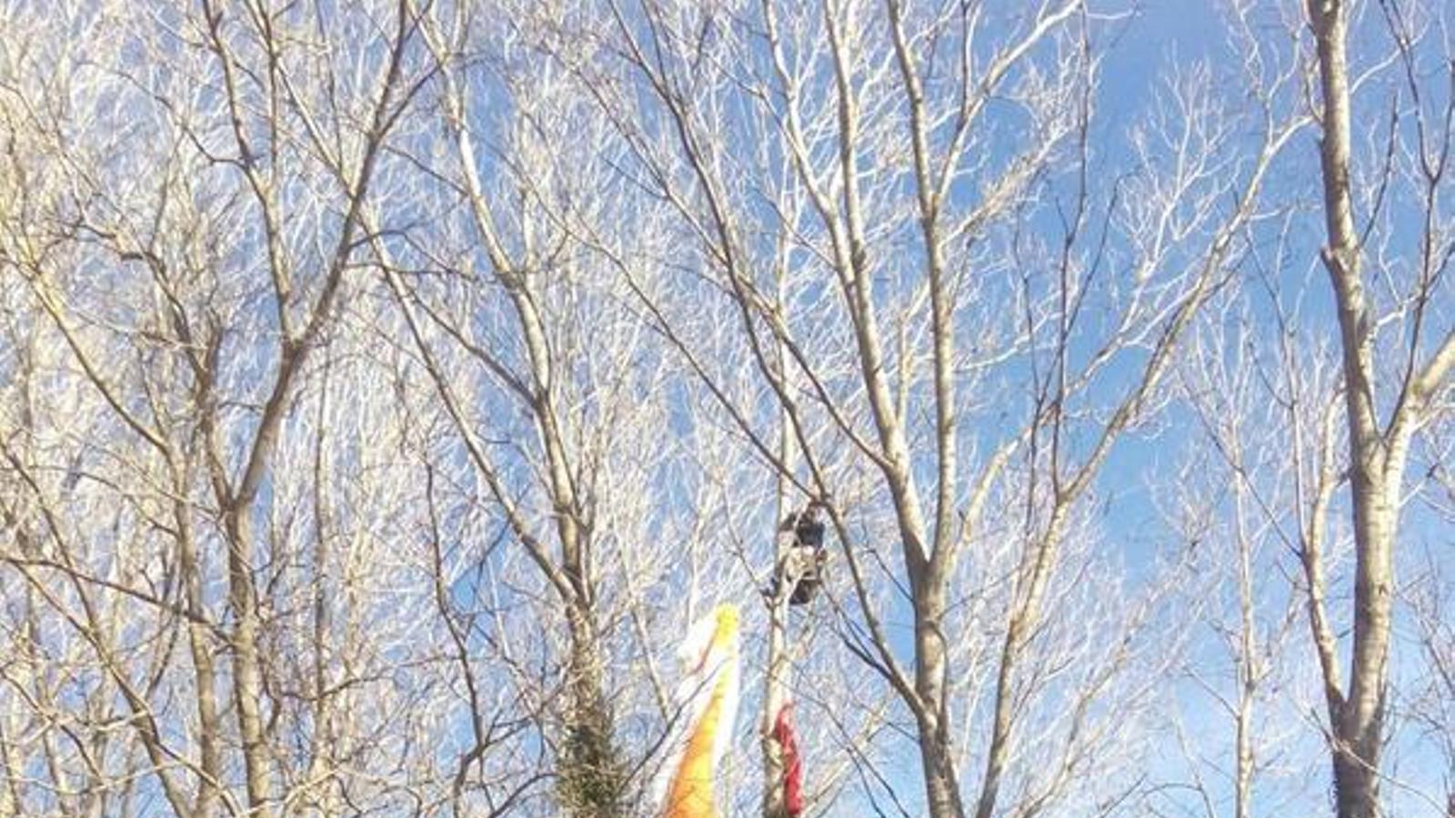 rescaten un paracaigudista que ha quedat penjat d 39 un arbre a 15 metres d 39 altura. Black Bedroom Furniture Sets. Home Design Ideas