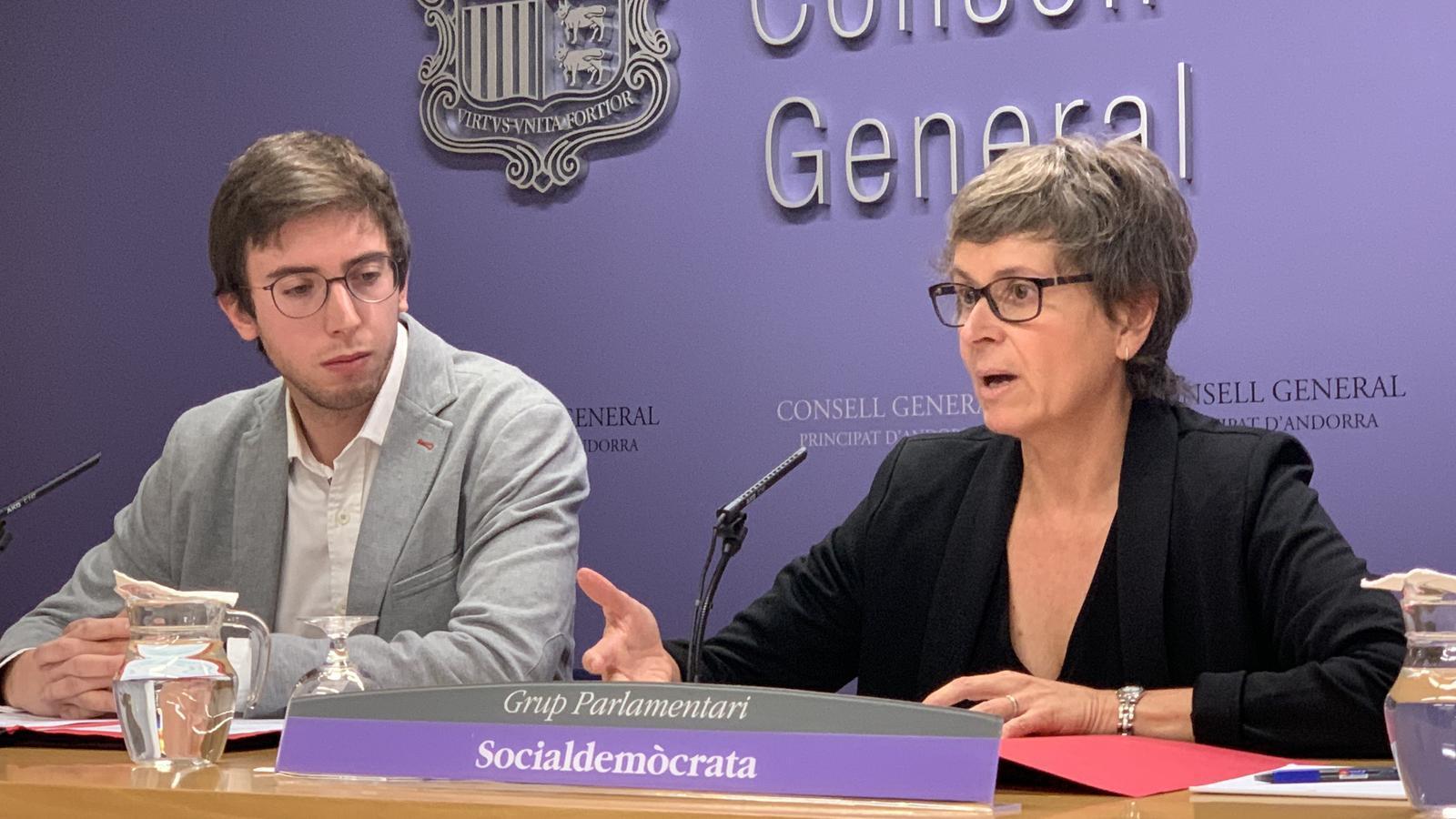 Els consellers generals del grup parlamentari socialsdemòcrata, Susanna Vela i Roger Padreny. / C.A.