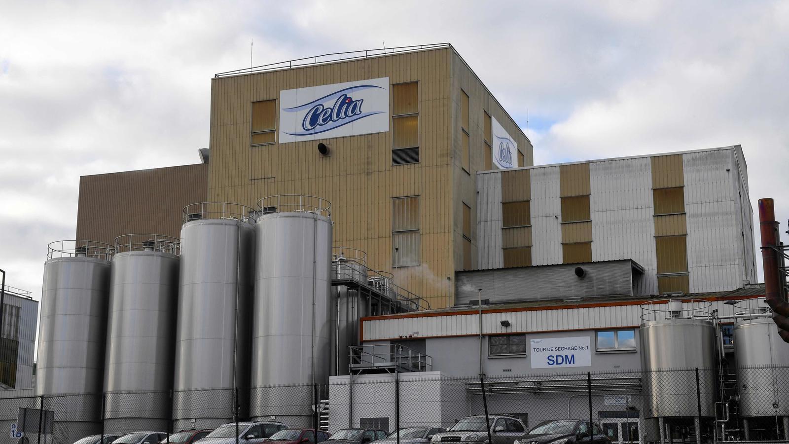 Retiren lots de llet per a nadons fabricada a França per risc de salmonel·losis