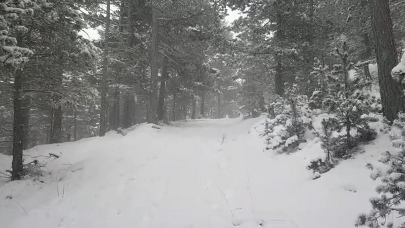 Nevada a l'Alt Berguedà