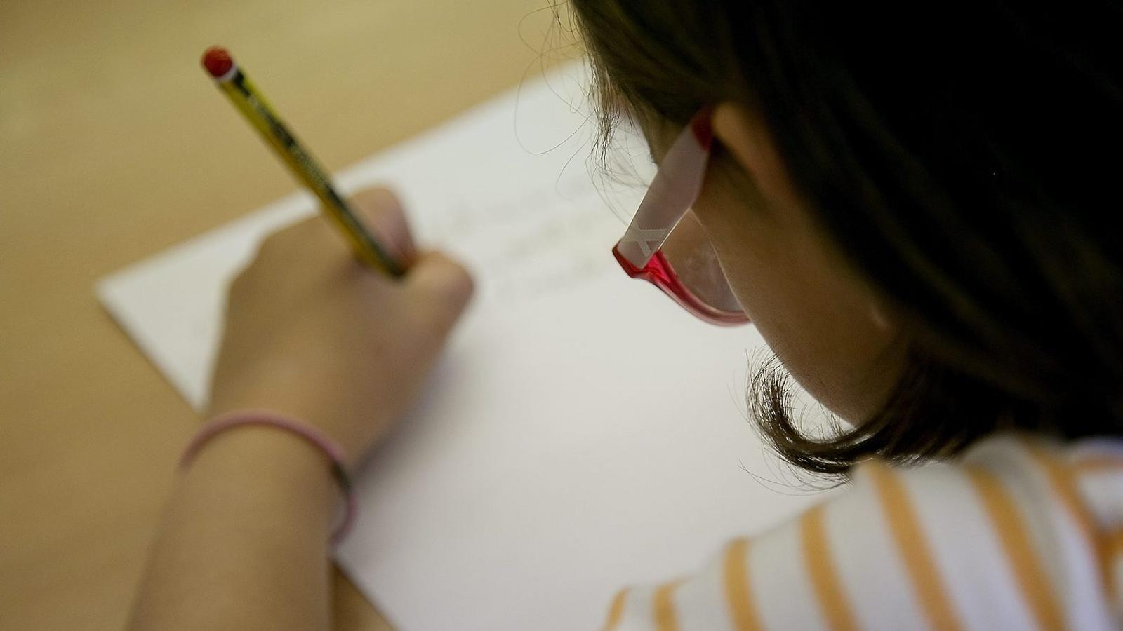 Molts mestres prefereixen una avaluació dels alumnes continuada i formativa.