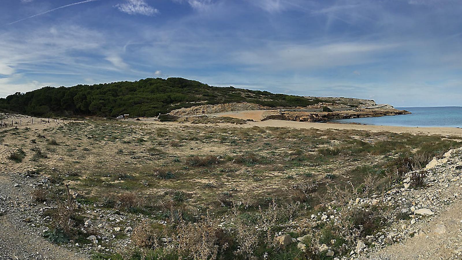 La protecció dels sistemes dunars és una  prioritat del Pla de gestió del litoral. A la foto, Cala Mitjana.