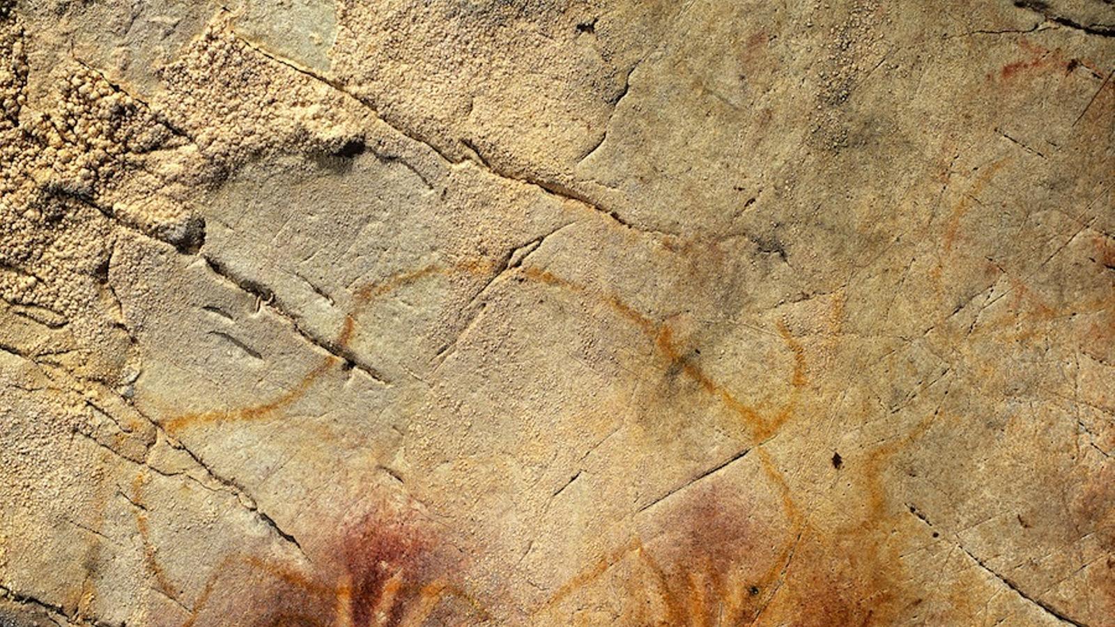 Reproducció de les pintures ruprestres al museu d'Altamira