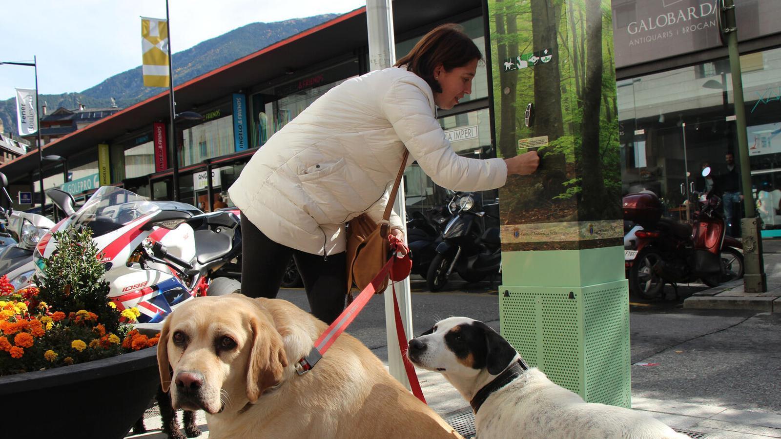 Una dona recull la galeta per premiar els gossos quan orinen a la reixa de la màquina. / M. F. (ANA)