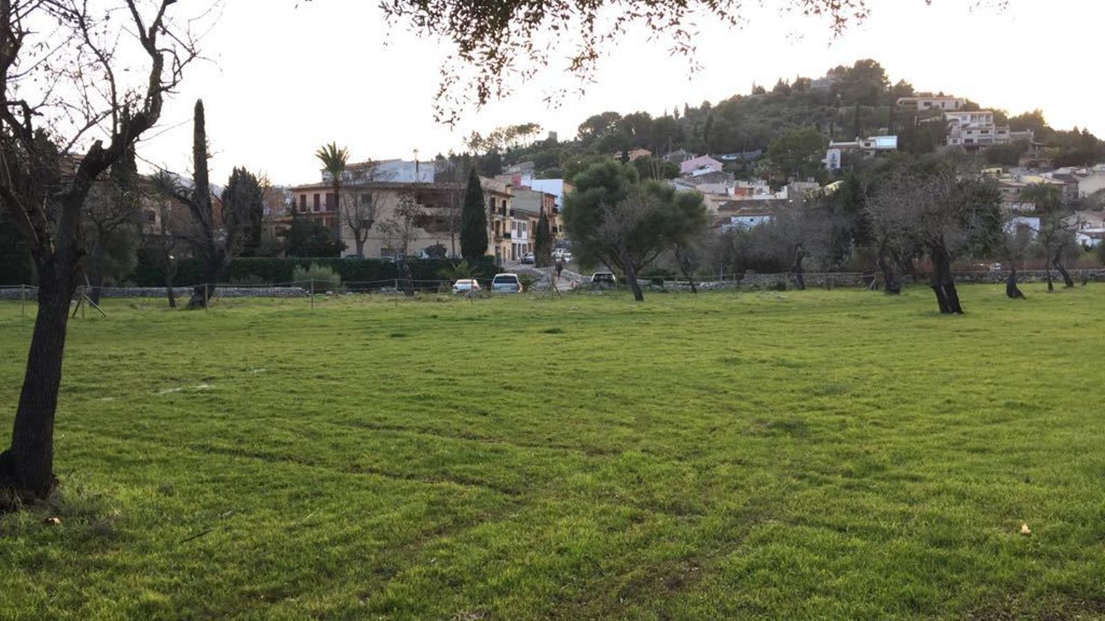 Solar de la Vinyeta, que es pretén equipar com a zona recreativa, vora el poble.