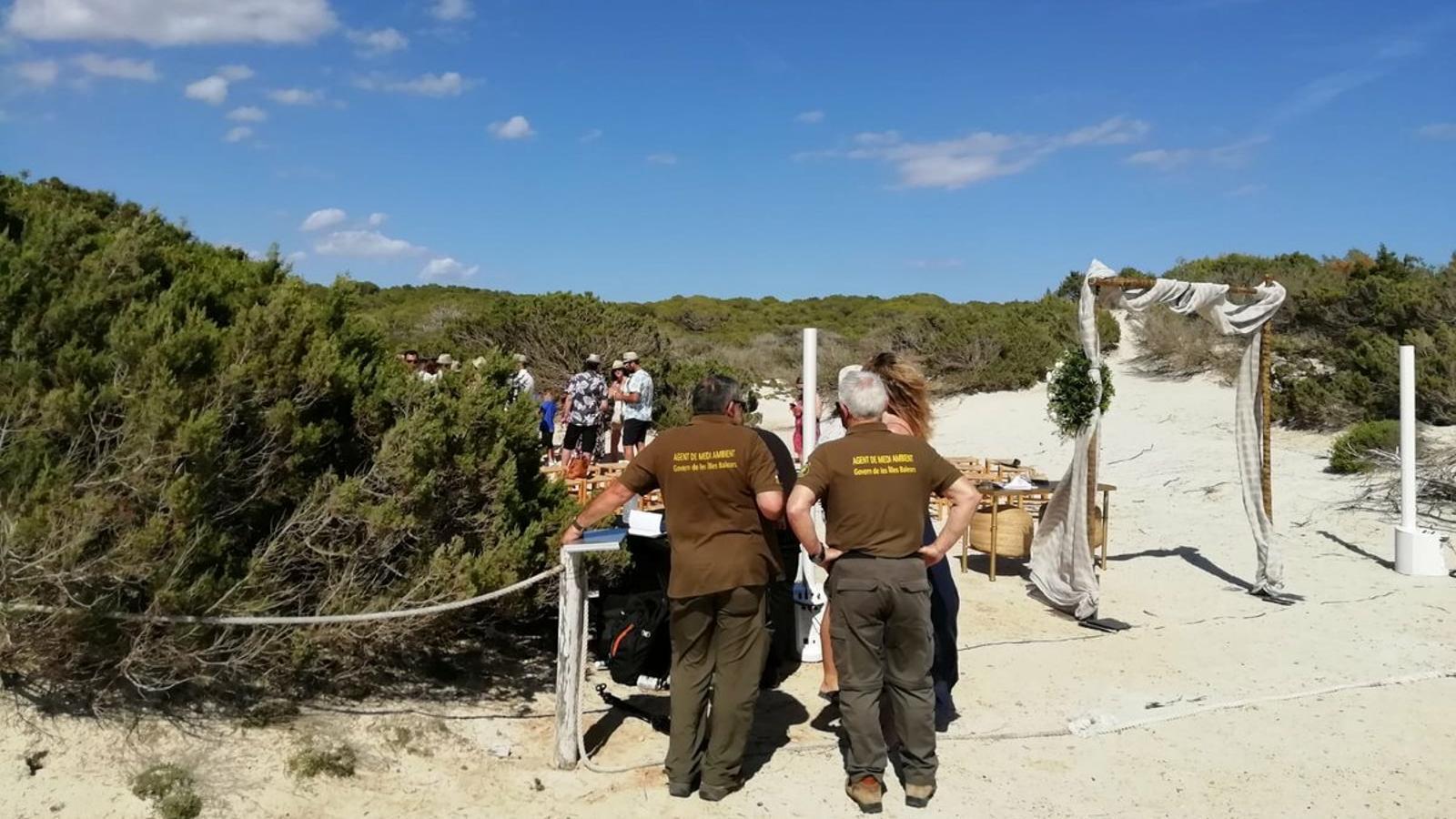 Medi Ambient atura unes noces no autoritzades a les dunes protegides del Trenc