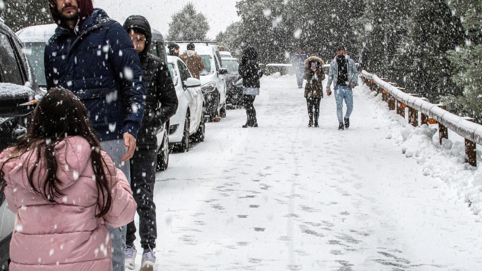 La neu obliga a tallar la carretera de la Serra de Tramuntana