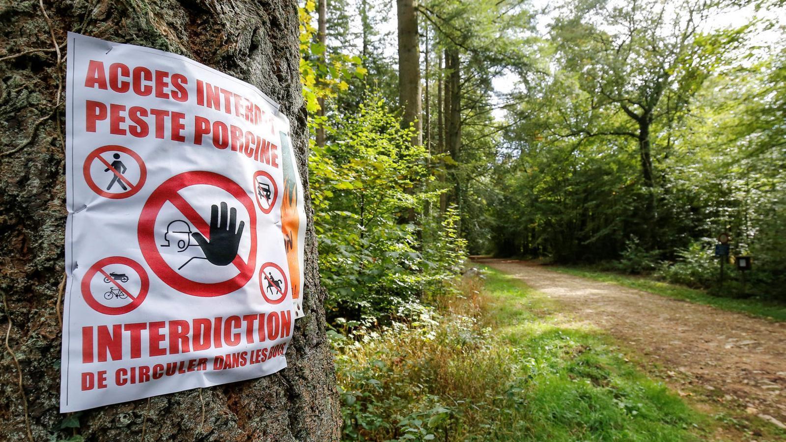 Un senyal de pas prohibit per peste porcina a Bèlgica, on ja s'han detectat 44 casos a pocs quilòmetres de la   Frontera francesa.