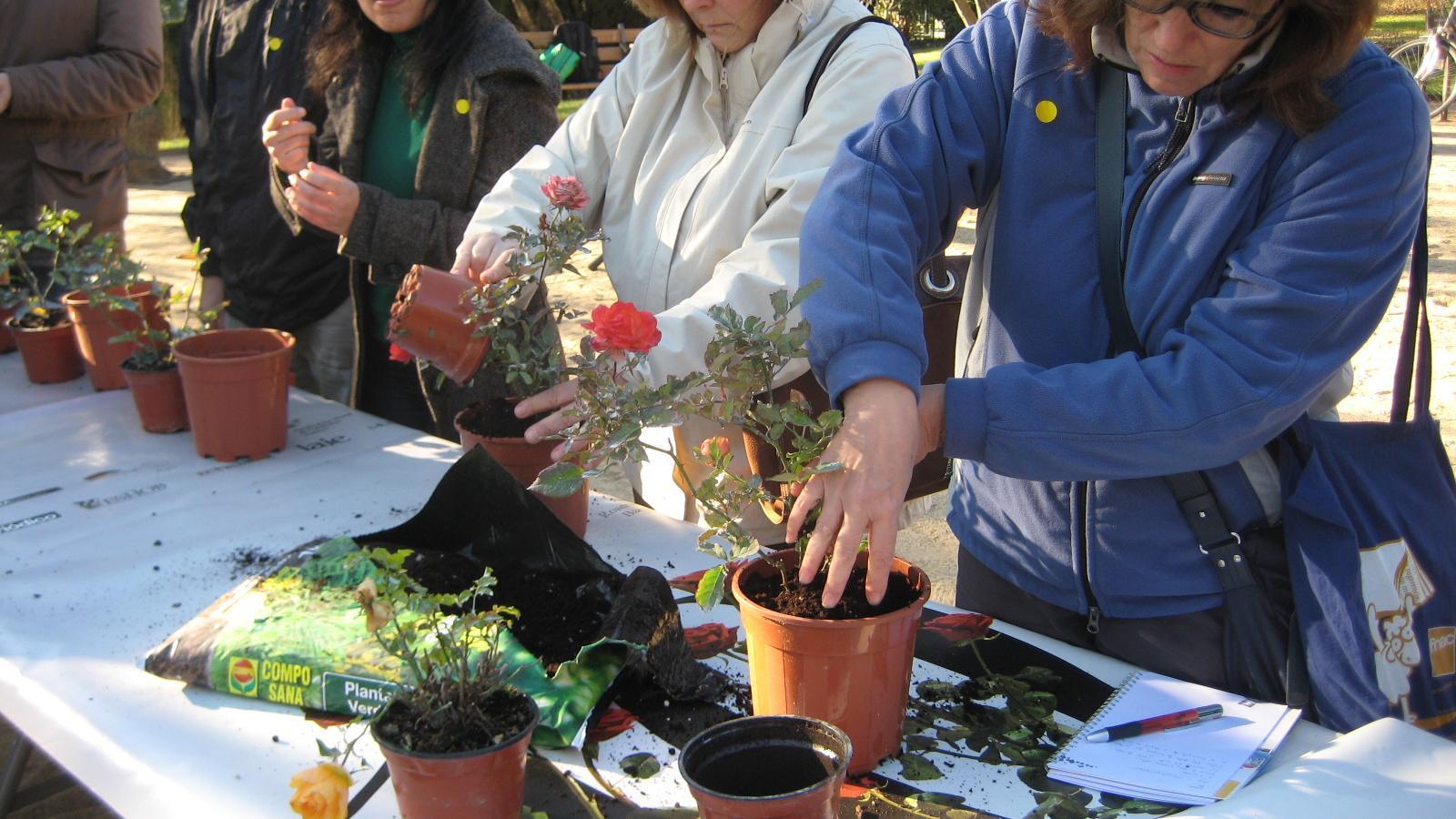 cursos de jardineria paisatge i espais verds per a tots