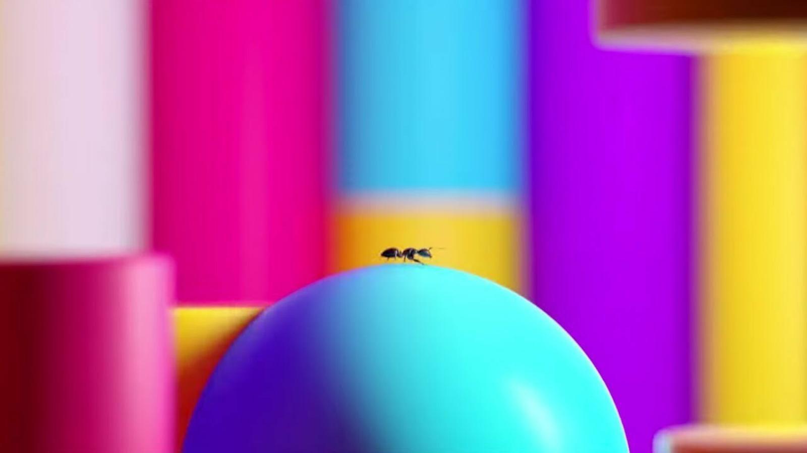 Nou videoclip de Manel, 'Formigues'