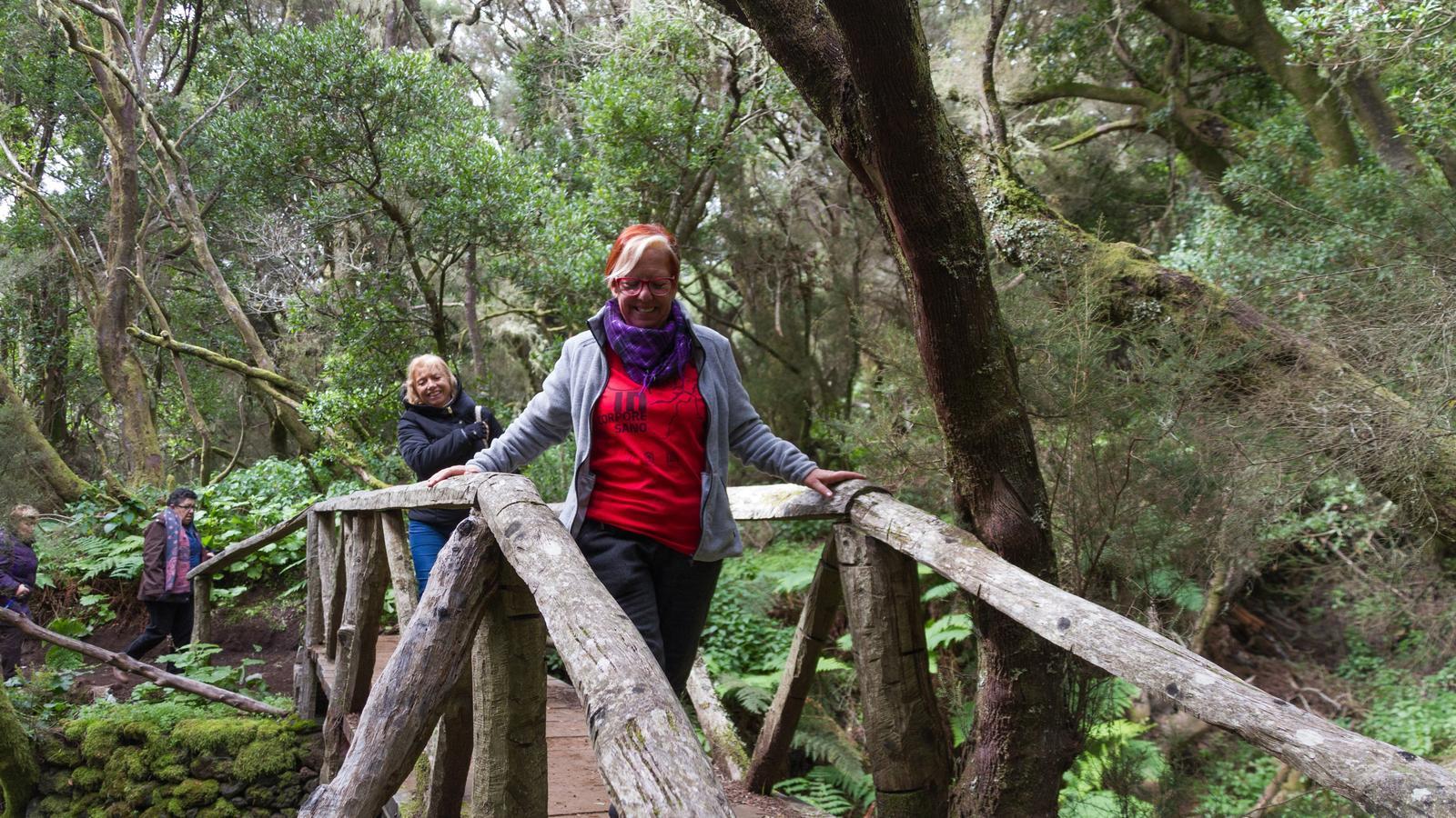 Passejar pel bosc és una activitat saludable / Fundació La Caixa