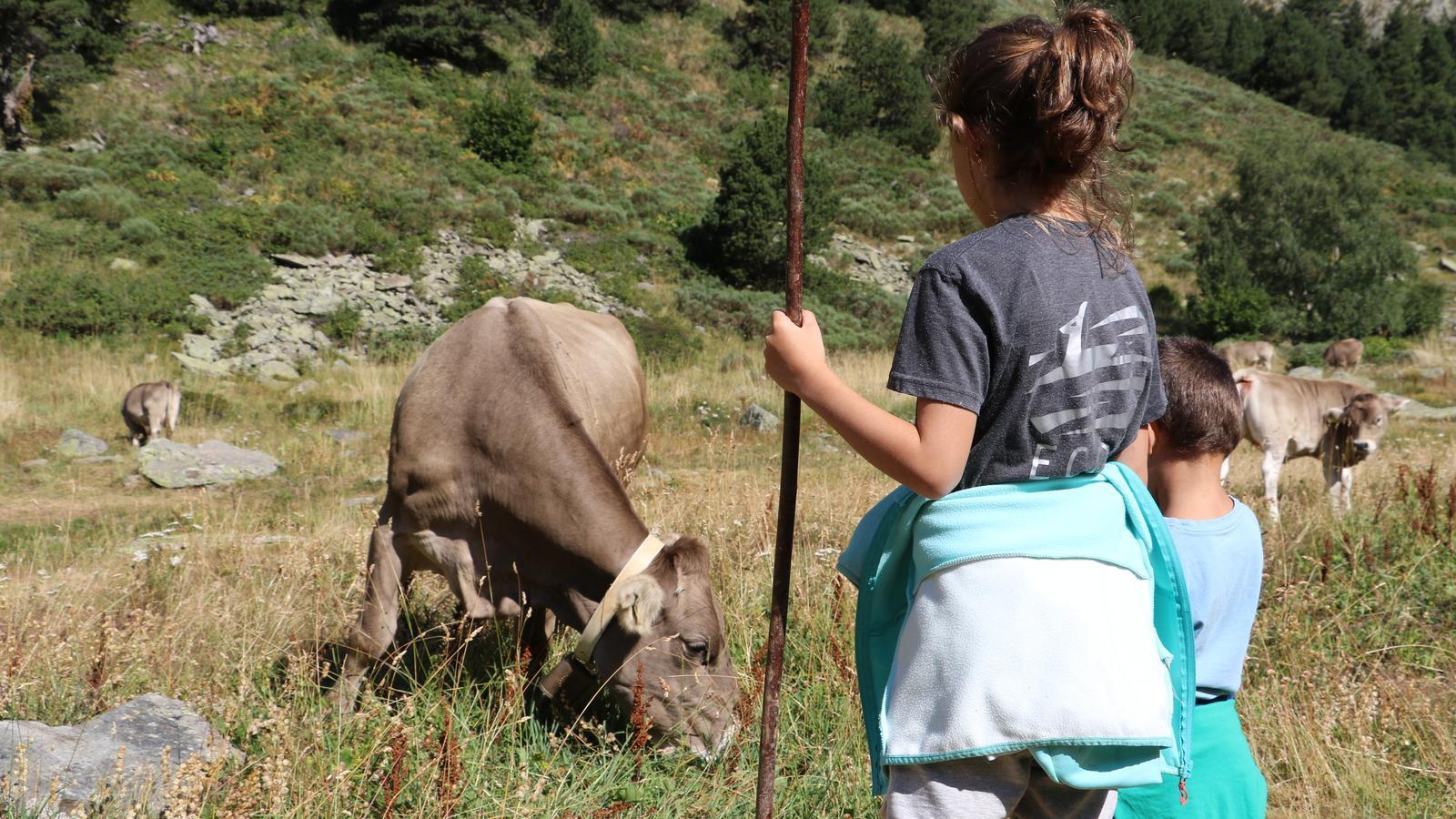 Joves generacions a la tradicional benedicció del bestiar, aquest divendres a Ordino. / E.C. (ANA)