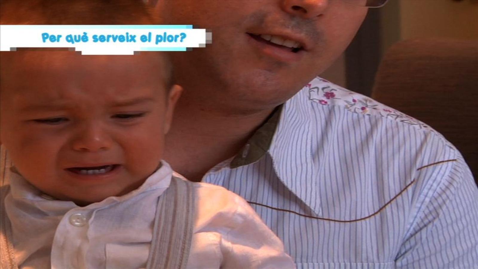 Criatures: Per què serveix el plor?