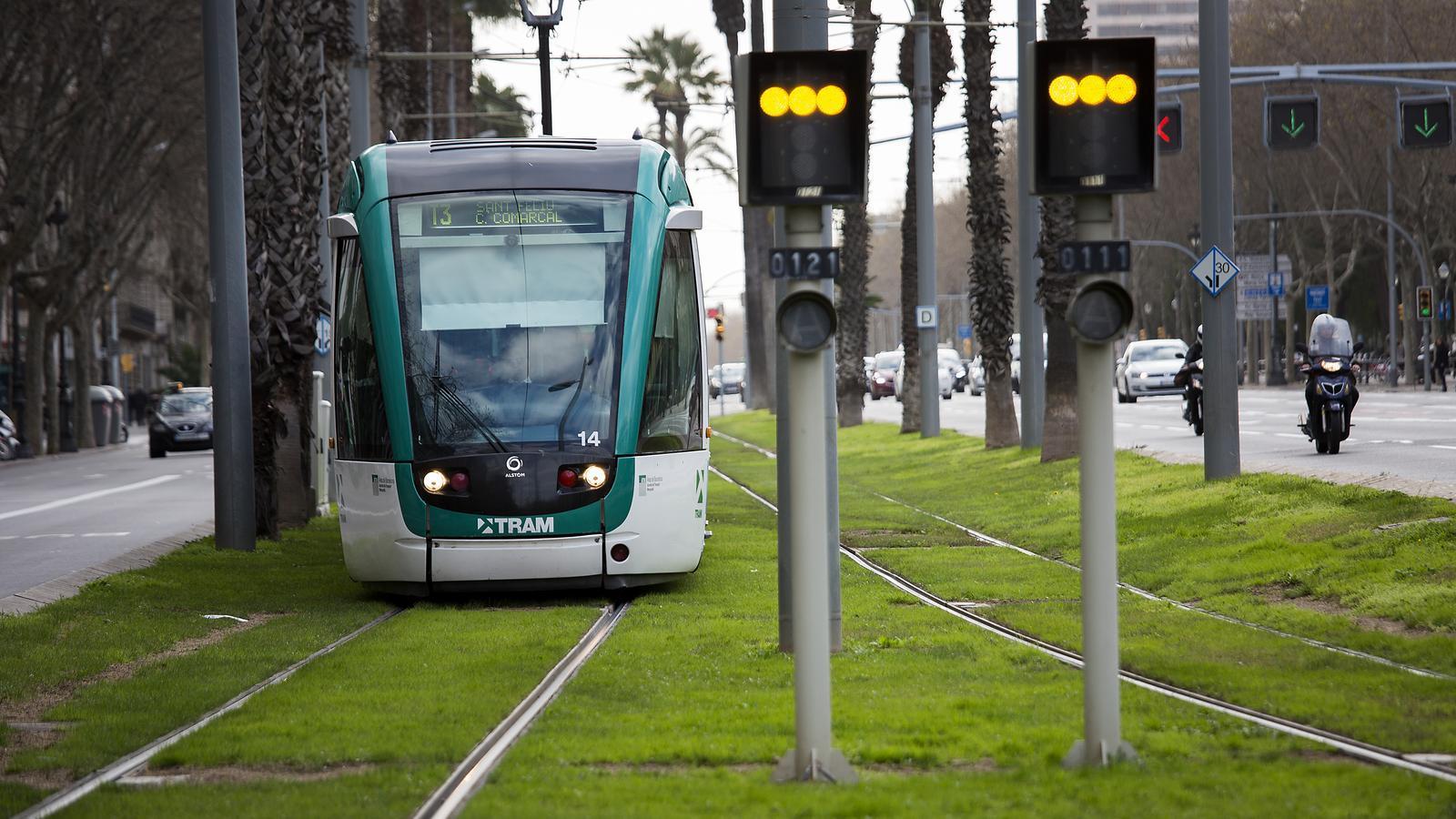 Imatge d'un comboi del tramvia de Barcelona.