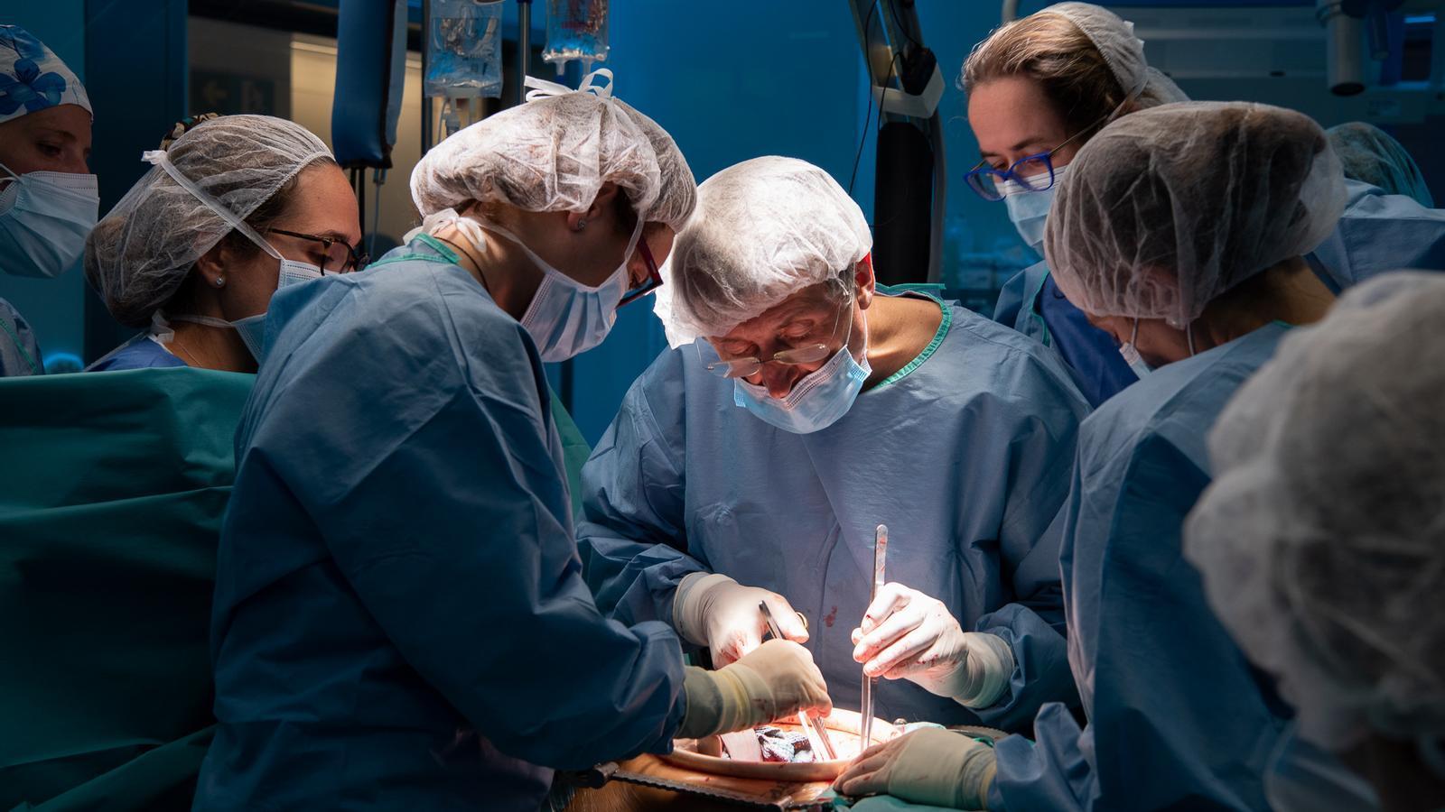L'Hospital Clínic fa el primer trasplantament d'úter a Espanya