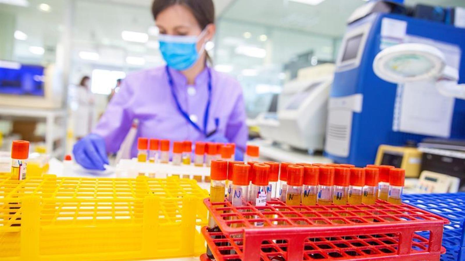 Una tècnica de laboratori amb diferent tests de coronavirus