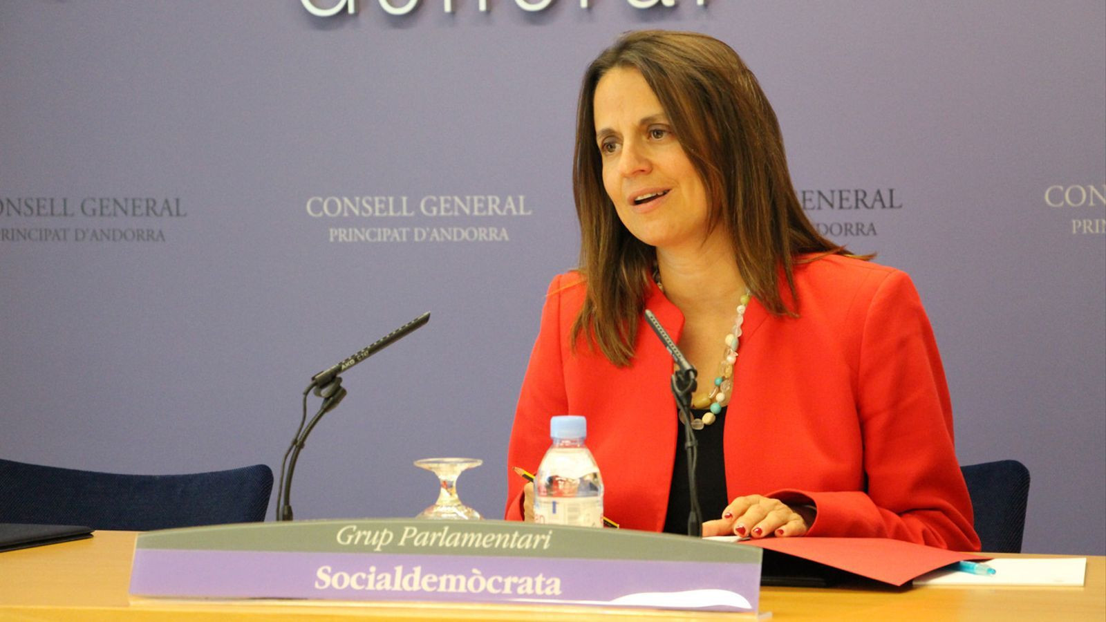 La consellera socialdemòcrata, Rosa Gili. / ARXIU ARA
