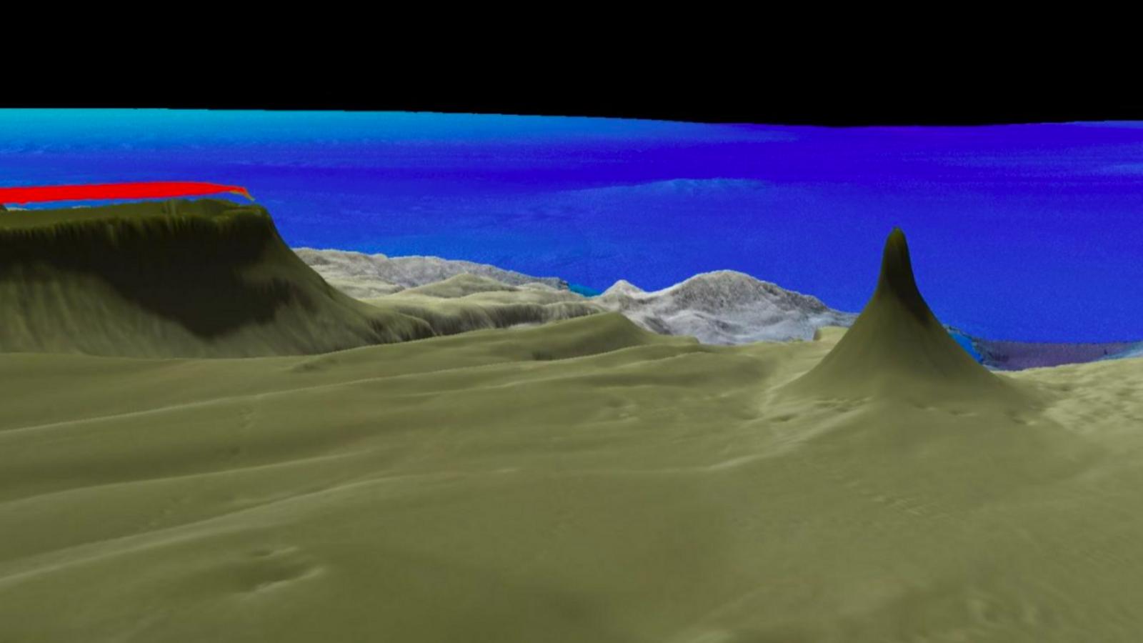 Representació de l'escull de corall trobat a la Gran Barrera d'Austràlia