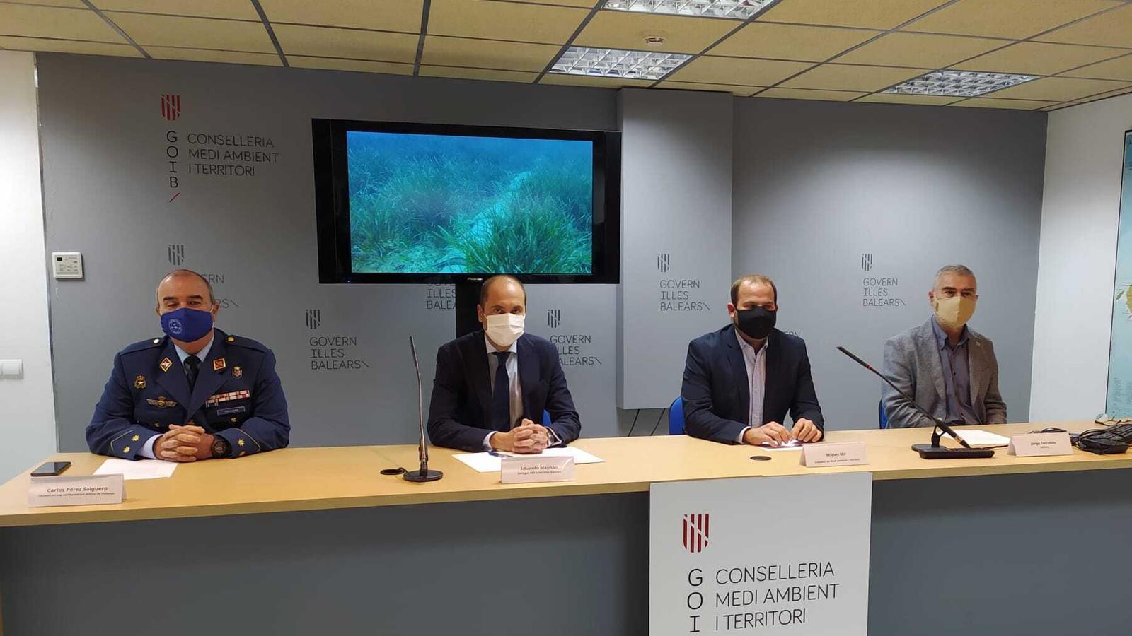 El projecte Bosc Marí ha plantat 12.800 fragments de posidònia./ T.R.