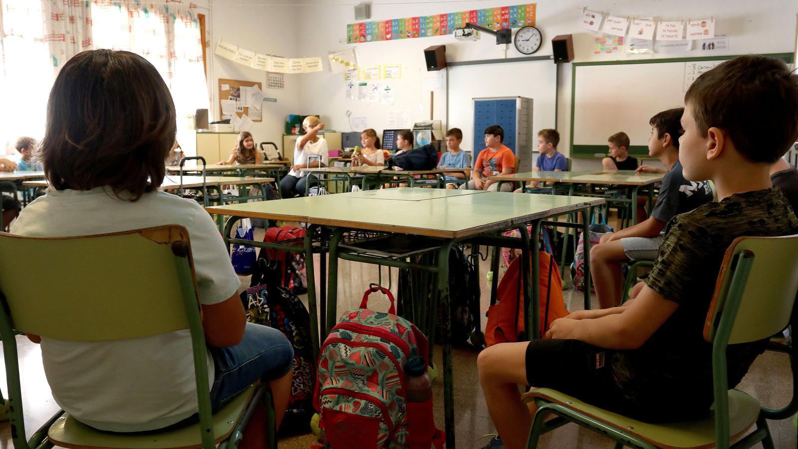 MÉS reclama una llei educativa que garanteixi l'ensenyament en català i una escola pública i laica