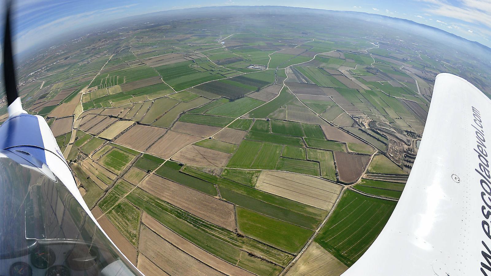 Imatge aèria d'uns camps conreats a Mollerussa, al Pla d'Urgell, en una imatge d'arxiu.