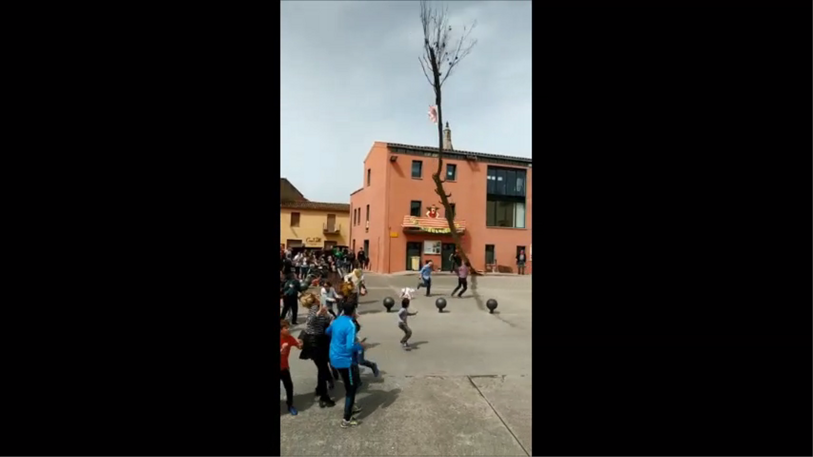Ensurt a Cornellà del Terri per la caiguda d'un arbre mentre celebraven la Festa Major