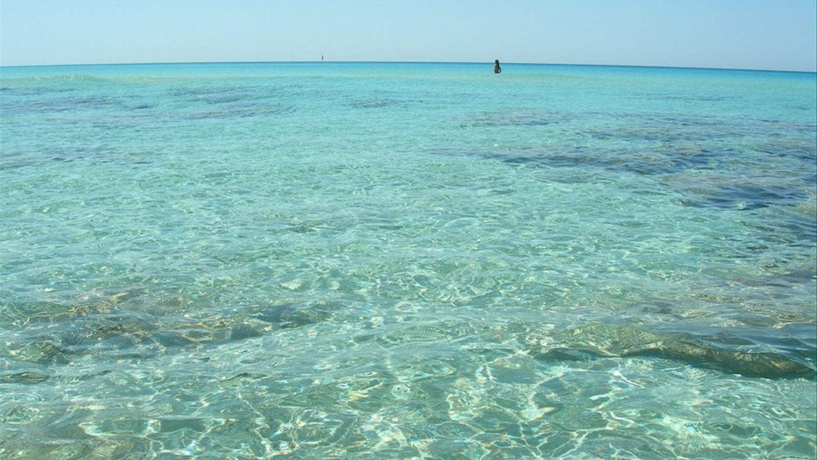 Una platja mediterrània, amb l'aigua transparent