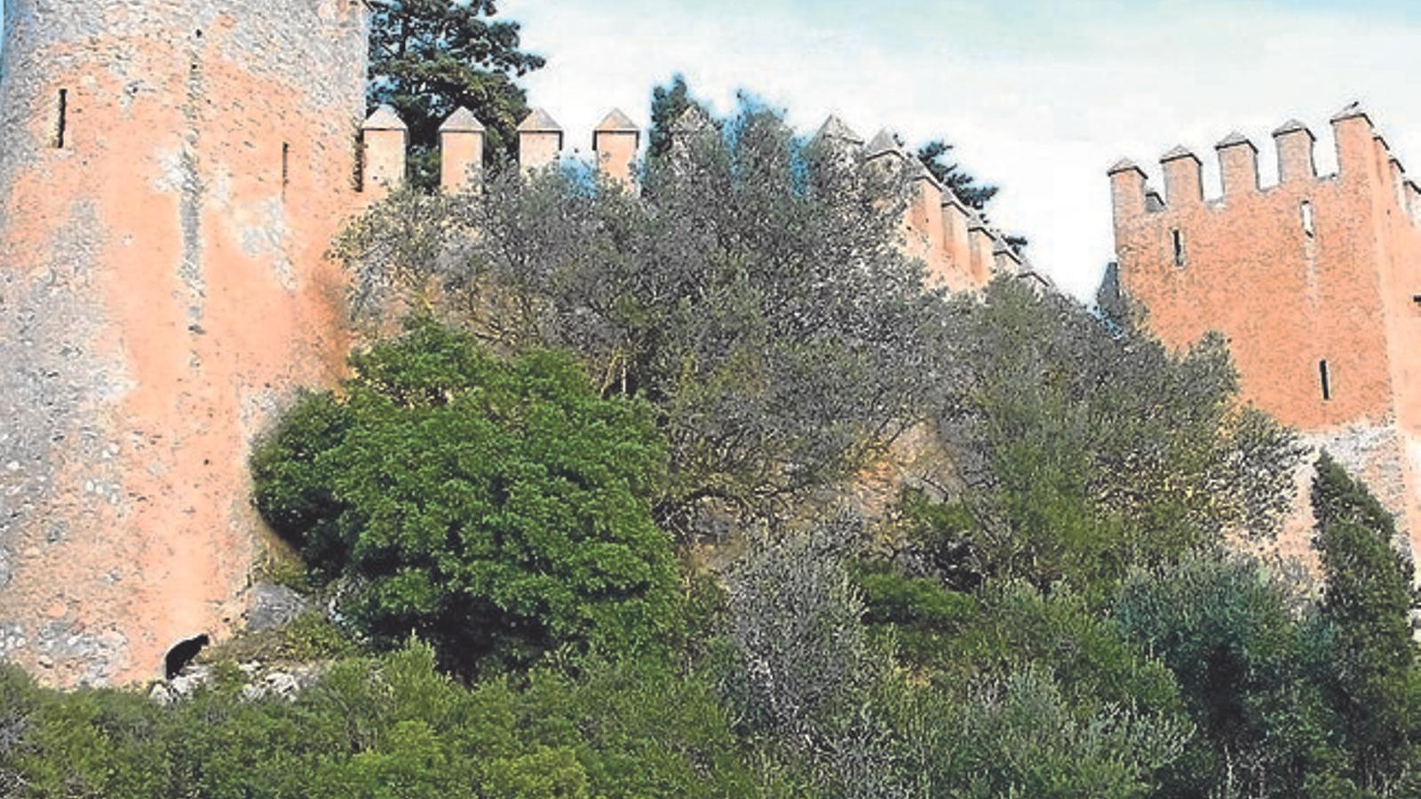 Les murades de Sant Salvador.