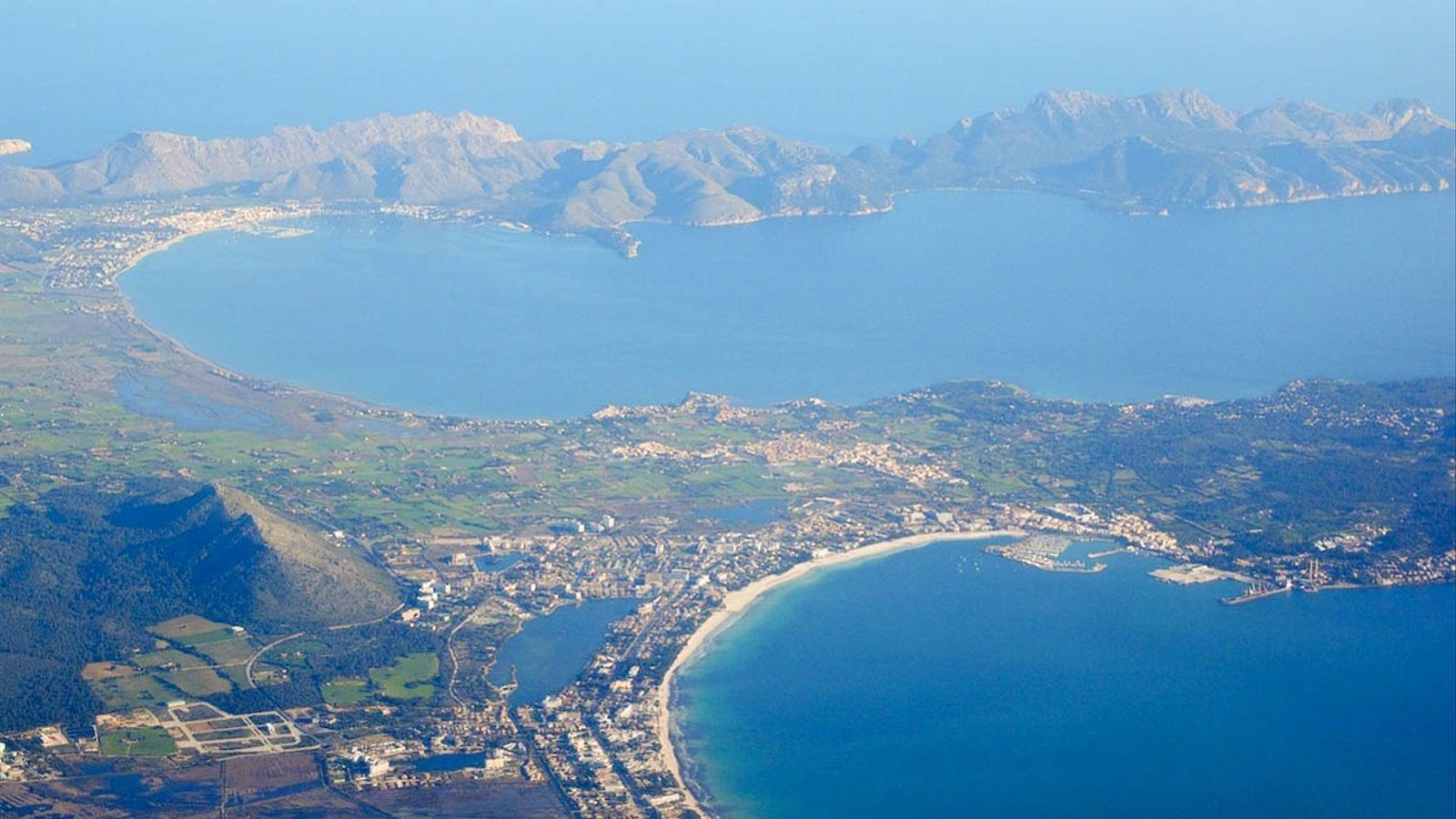 La posidònia de les badies d'Alcúdia i Pollença, la més degradada de les Balears
