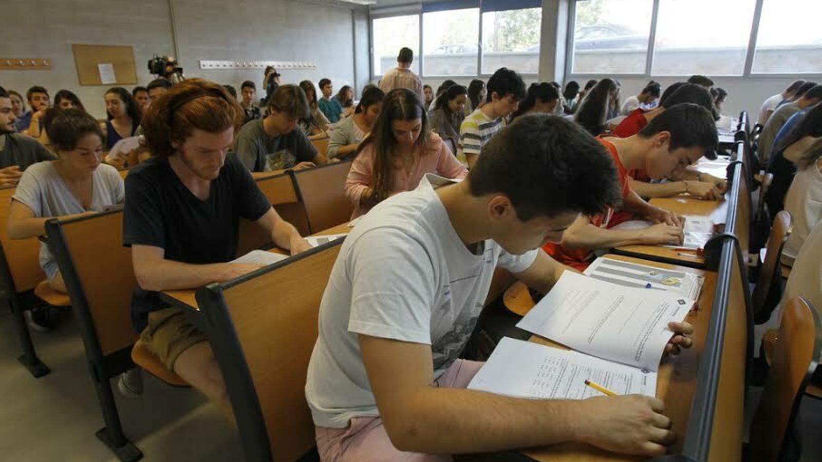Les proves avaluaran quatre àrees, a cada una de les quals s'haurà d'obtenir com a mínim un 60% de puntuació.