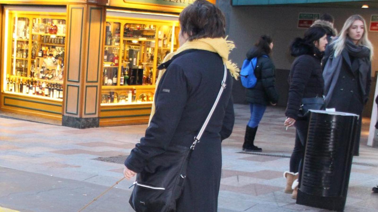 Una dona passeja dos gossos per l'avinguda Carlemany. / ARXIU
