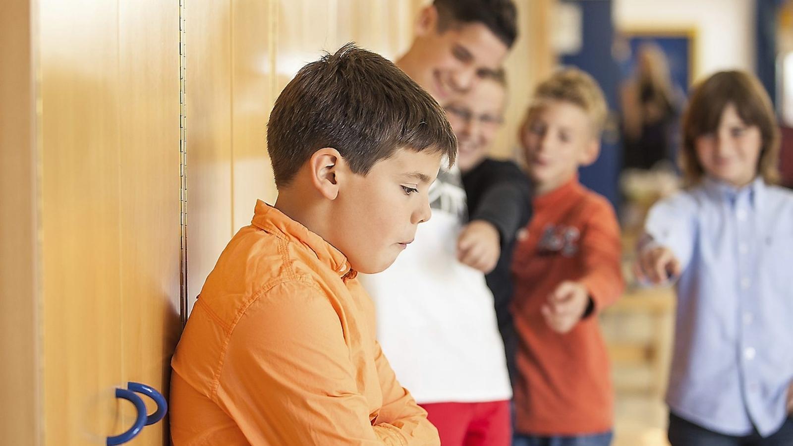 El 'bullying'  Un fenomen de grup   'Bullying'  Algunes xifres