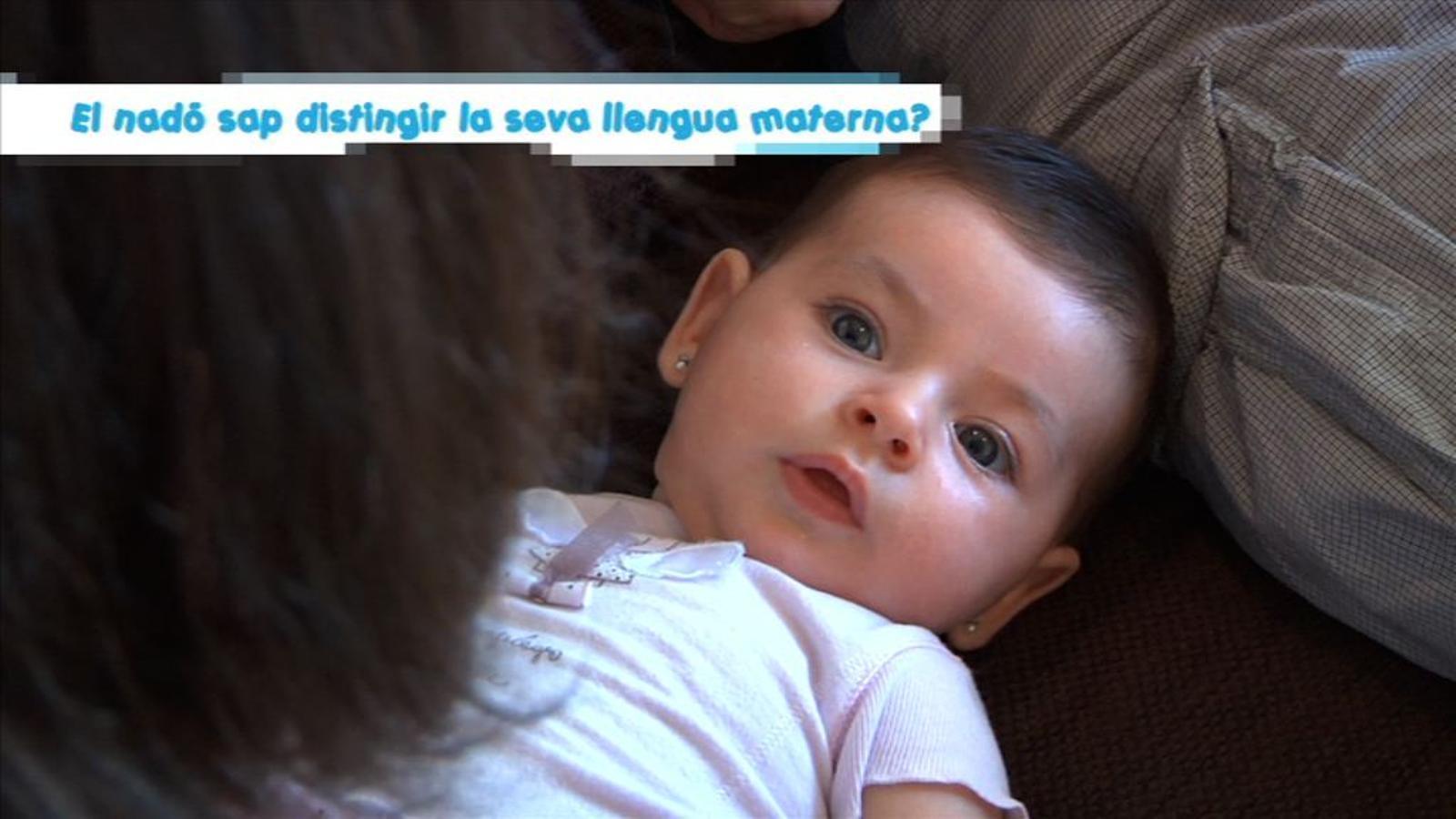 Criatures: El nadó sap distingir la seva llengua materna?