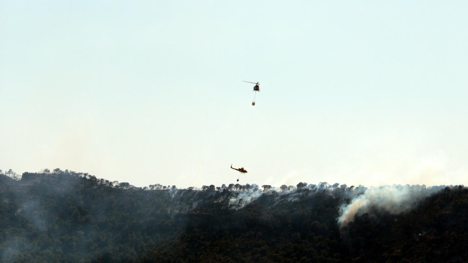 Els bombers controlen una represa de l'incendi de l'Ebre